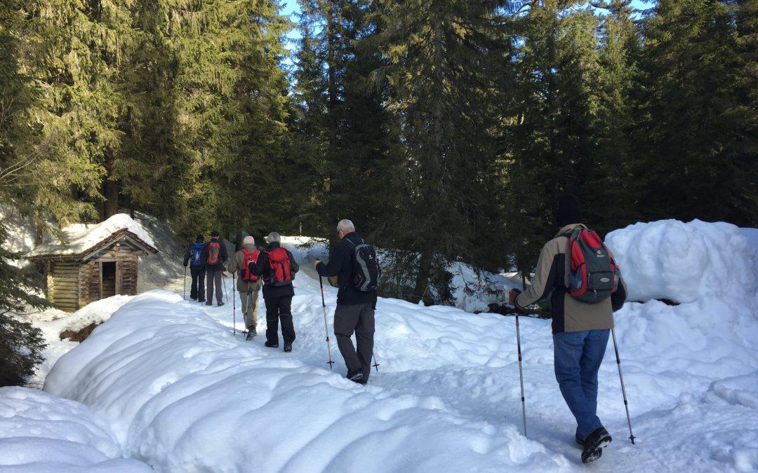 Randonnée d'hiver des Marcheurs