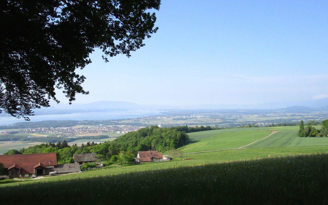 Marche à  Burtigny
