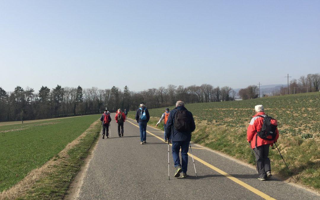 St-Prex – Allaman par les petits chemins
