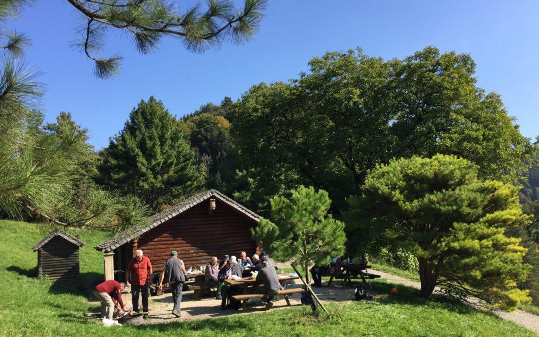 Randonnée à travers l'Arboretum